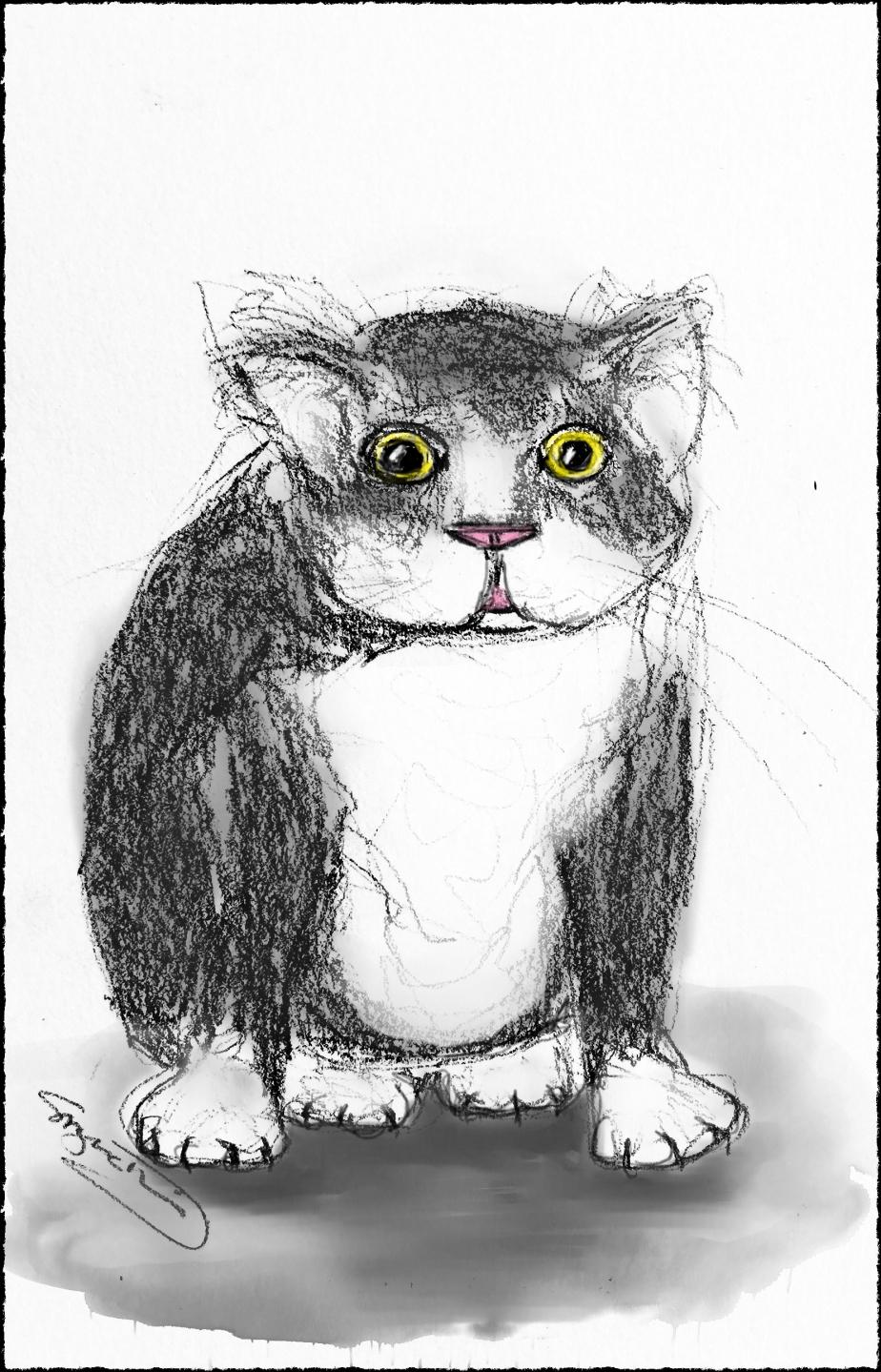 Mr Woods sketch painted