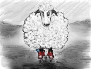sheep2painted